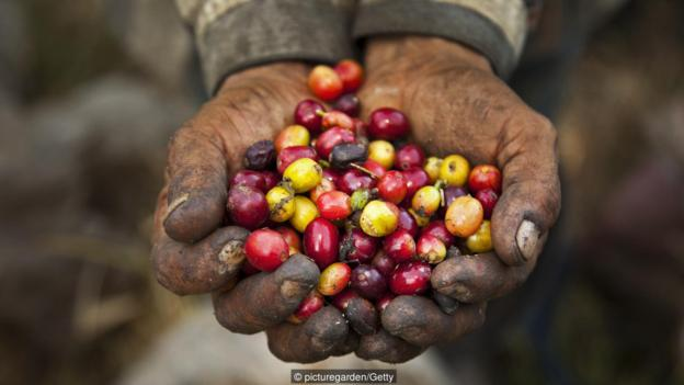 An end to second-hand coffee. {BBC}